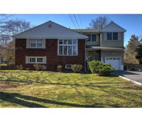 23 Meadowbrook Lane, Piscataway, NJ 08854 (MLS #1713690) :: The Dekanski Home Selling Team
