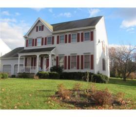 16 Gilman Drive, Piscataway, NJ 08854 (MLS #1713706) :: The Dekanski Home Selling Team