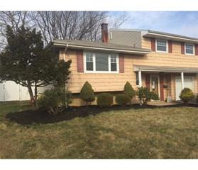 33 Hemlock Drive, Port Reading, NJ 07064 (MLS #1713707) :: The Dekanski Home Selling Team
