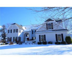 10 Woodland Drive, Plainsboro, NJ 08512 (MLS #1713726) :: The Dekanski Home Selling Team