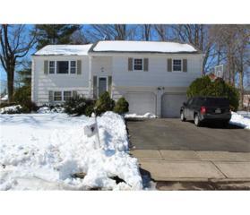 23 Hilltop Road, Edison, NJ 08820 (MLS #1713741) :: The Dekanski Home Selling Team