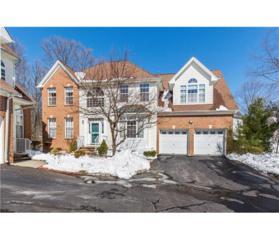 307 Oriole Court, North Brunswick, NJ 08902 (MLS #1713775) :: The Dekanski Home Selling Team