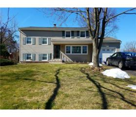 318 Perrine Avenue, Piscataway, NJ 08854 (MLS #1713779) :: The Dekanski Home Selling Team