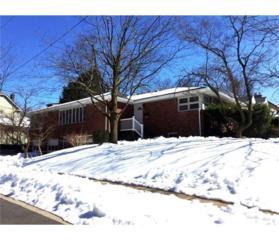 151 N Fifth Avenue, Highland Park, NJ 08904 (MLS #1713806) :: The Dekanski Home Selling Team