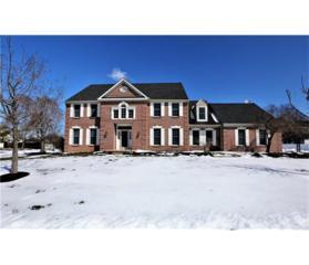 44 Kinglet Drive S, Plainsboro, NJ 08512 (MLS #1713932) :: The Dekanski Home Selling Team