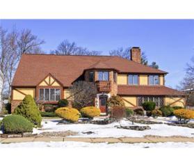 6 Ross Avenue, Edison, NJ 08820 (MLS #1713964) :: The Dekanski Home Selling Team