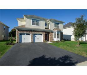 24 Dahlia Court, Piscataway, NJ 08854 (MLS #1713987) :: The Dekanski Home Selling Team