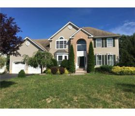 6 Grano Street, Monroe, NJ 08831 (MLS #1714010) :: The Dekanski Home Selling Team