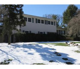 116 Livingston Avenue N, Edison, NJ 08820 (MLS #1714079) :: The Dekanski Home Selling Team
