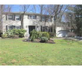 5 Fernwood Court, East Brunswick, NJ 08816 (MLS #1714130) :: The Dekanski Home Selling Team