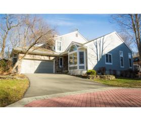 10 Morning Glory Court, South Brunswick, NJ 08540 (MLS #1714396) :: The Dekanski Home Selling Team