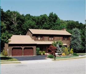 123 Elizabeth Avenue, Edison, NJ 08820 (MLS #1707024) :: The Dekanski Home Selling Team