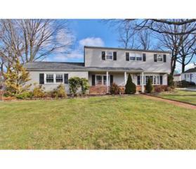 405 Cotton Street, South Plainfield, NJ 07080 (MLS #1709684) :: The Dekanski Home Selling Team