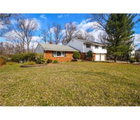 10 Dunbar Avenue, Piscataway, NJ 08854 (MLS #1712447) :: The Dekanski Home Selling Team