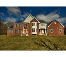 28 Meadowlark Drive, Plainsboro, NJ 08536 (MLS #1712757) :: The Dekanski Home Selling Team