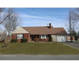 3 Taylor Drive, New Brunswick, NJ 08901 (MLS #1713314) :: The Dekanski Home Selling Team
