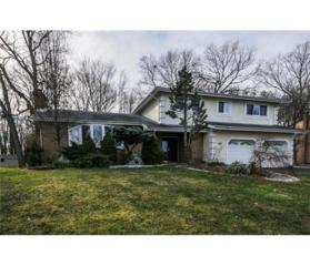 24 Woodmere Road, North Brunswick, NJ 08902 (MLS #1714135) :: The Dekanski Home Selling Team
