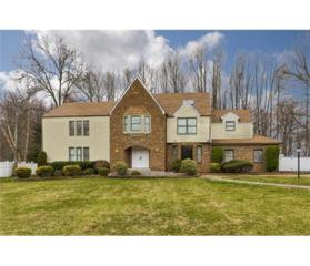 52 Peach Orchard Drive, East Brunswick, NJ 08816 (MLS #1712484) :: The Dekanski Home Selling Team