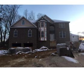 17 Elliot Drive, Monroe, NJ 08831 (MLS #1701731) :: The Dekanski Home Selling Team