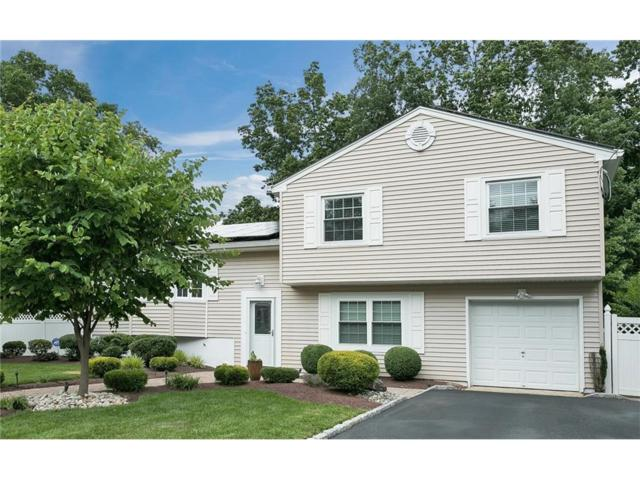 449 Wheeler Road, North Brunswick, NJ 08902 (MLS #1721259) :: The Dekanski Home Selling Team