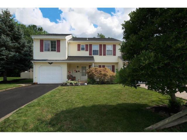 170 Zwolak Court, South Plainfield, NJ 07080 (MLS #1801112) :: The Dekanski Home Selling Team