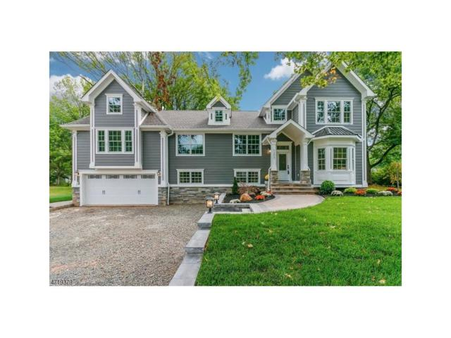 1257 Maple Hill Road, Scotch Plains, NJ 07076 (#1805960) :: Daunno Realty Services, LLC