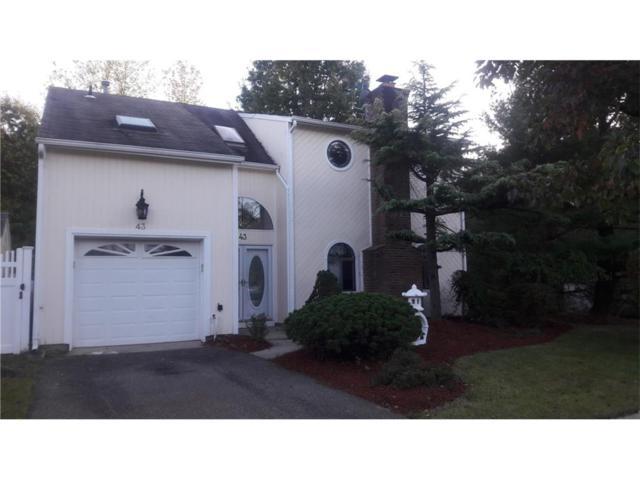 43 Candlewick Court, Old Bridge, NJ 07747 (MLS #1806475) :: The Dekanski Home Selling Team