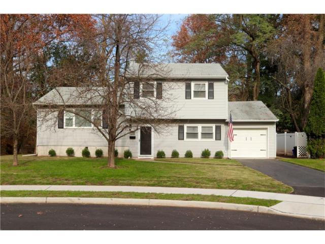 18 Bonnie Brook Terrace, Middlesex Boro, NJ 08846 (MLS #1808645) :: The Dekanski Home Selling Team