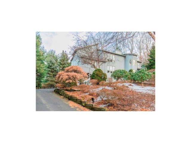 7 Jayhawk Way, Holmdel, NJ 07733 (MLS #1816258) :: Vendrell Home Selling Team