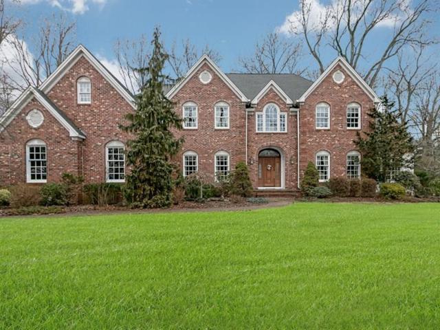 1270 Lenape Way, Scotch Plains, NJ 07076 (#1825839) :: Daunno Realty Services, LLC