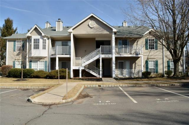 4 Opal Court #43, Franklin, NJ 08823 (MLS #1915282) :: Vendrell Home Selling Team