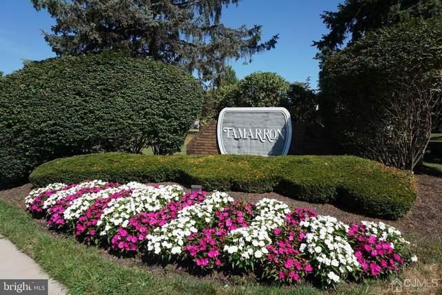 8010 Tamarron Drive, Plainsboro, NJ 08536 (MLS #2104183) :: William Hagan Group