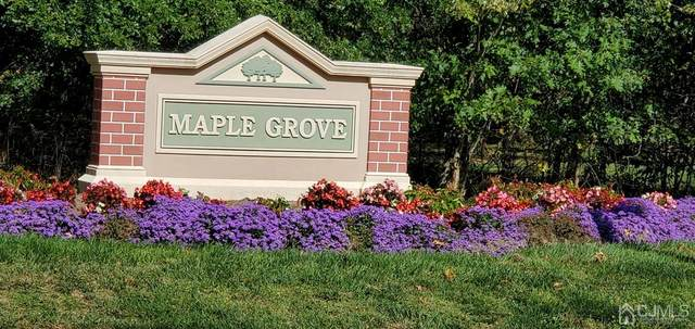 279 Vasser Drive #279, Piscataway, NJ 08854 (MLS #2105226) :: Kiliszek Real Estate Experts