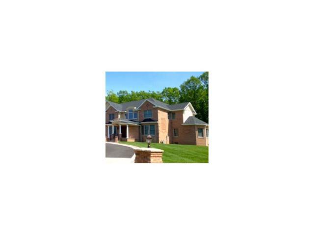 1 Gloria Lane, Monroe, NJ 08831 (MLS #1622799) :: REMAX Platinum