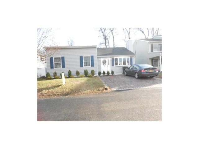 293 Furman Boulevard, Old Bridge, NJ 07735 (MLS #1709203) :: The Dekanski Home Selling Team