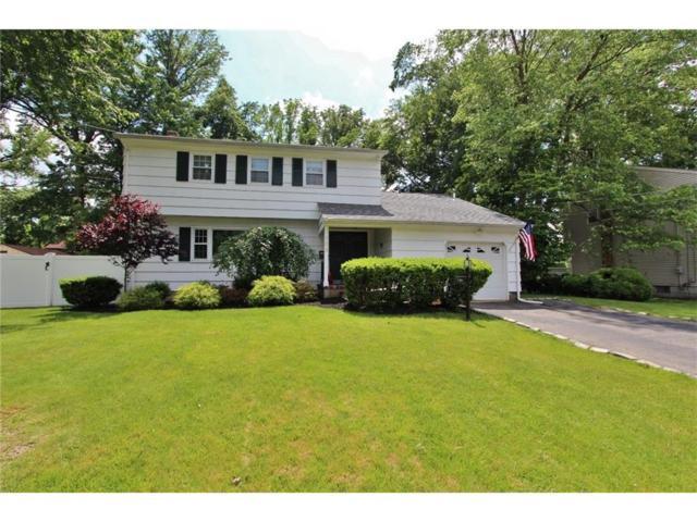 105 Devon Lane, South Plainfield, NJ 07080 (MLS #1719556) :: The Dekanski Home Selling Team