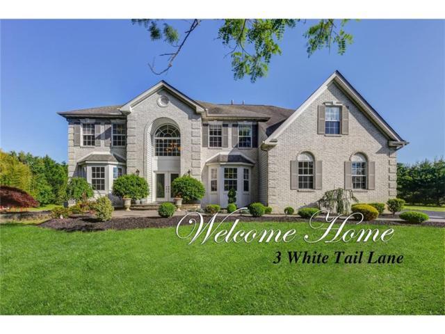3 White Tail Lane, Monroe, NJ 08831 (MLS #1719829) :: The Dekanski Home Selling Team