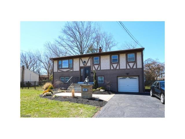 9 George Street, South Plainfield, NJ 07080 (MLS #1719926) :: The Dekanski Home Selling Team
