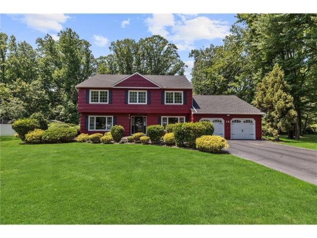 19 Tara Drive, Old Bridge, NJ 07747 (MLS #1720421) :: The Dekanski Home Selling Team