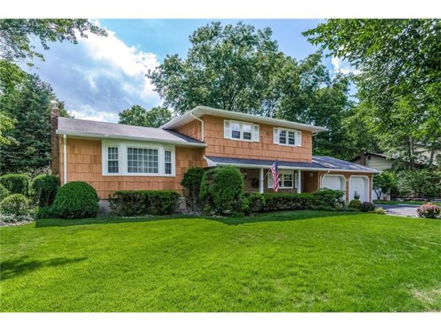 18 Thames Road, Piscataway, NJ 08854 (MLS #1720529) :: The Dekanski Home Selling Team