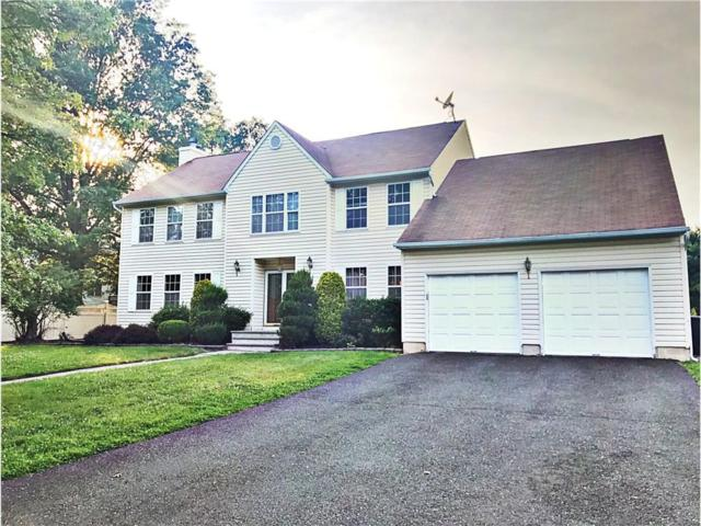 602 Hanson Avenue, Piscataway, NJ 08854 (MLS #1720611) :: The Dekanski Home Selling Team