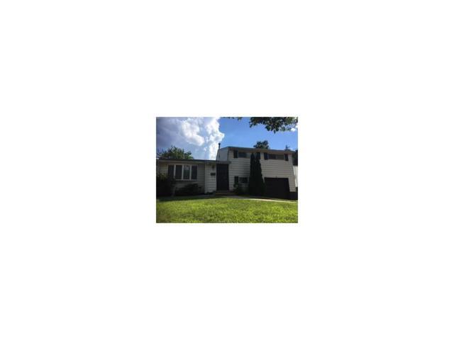 31 Frederick Place, Sayreville, NJ 08859 (MLS #1721194) :: The Dekanski Home Selling Team