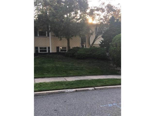 17 Peake Road, Edison, NJ 08837 (MLS #1711555) :: The Dekanski Home Selling Team