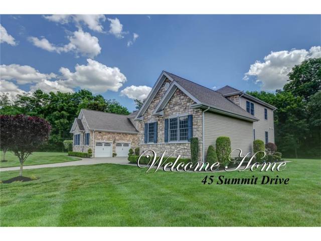 45 Summit Drive N, South Brunswick, NJ 08816 (MLS #1719284) :: The Dekanski Home Selling Team
