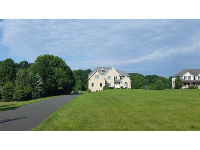 441 Schoolhouse Road, Monroe, NJ 08831 (MLS #1720231) :: The Dekanski Home Selling Team