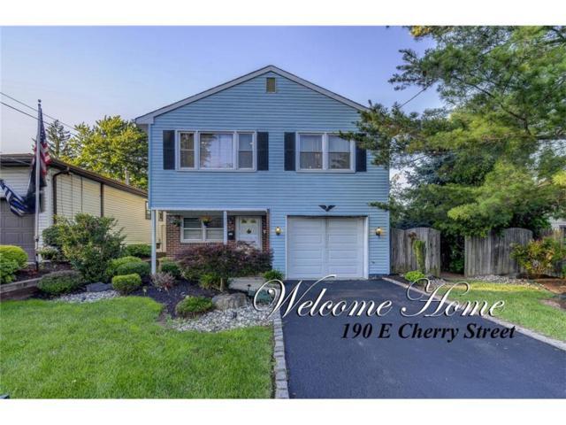 190 E Cherry Street, Carteret, NJ 07008 (MLS #1720744) :: The Dekanski Home Selling Team