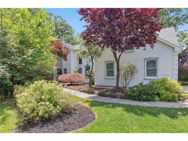 9 Jenna Lane, Edison, NJ 08820 (MLS #1720805) :: The Dekanski Home Selling Team