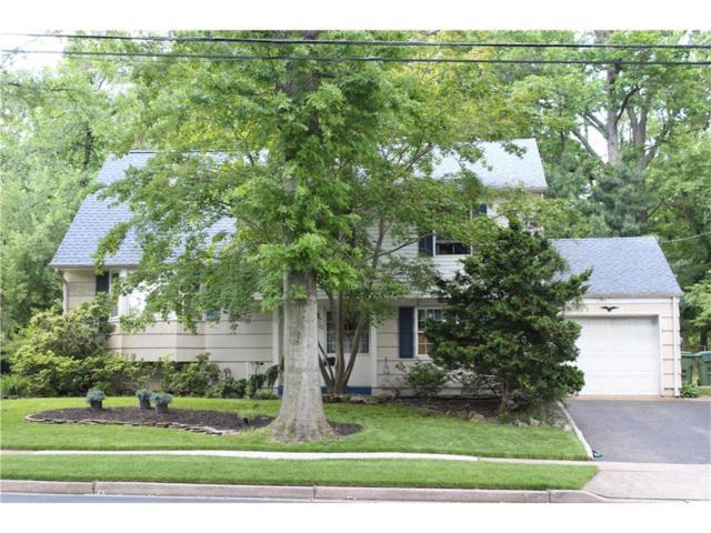 22 Meyer Road, Edison, NJ 08817 (MLS #1719261) :: The Dekanski Home Selling Team