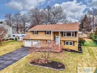 230 Davis Avenue, Piscataway, NJ 08854 (MLS #2010320) :: Vendrell Home Selling Team