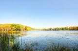 Lake Road - Photo 12